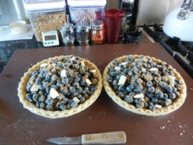 Blueberry pie ready for the oven